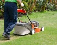 Domestic Grass Cutting Service In Sheffield