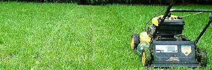 Lawn Mowing - Grass Cutting Service In Sheffield
